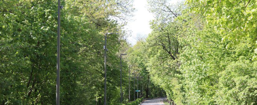Intelligens világítás a Normafa futópályáján